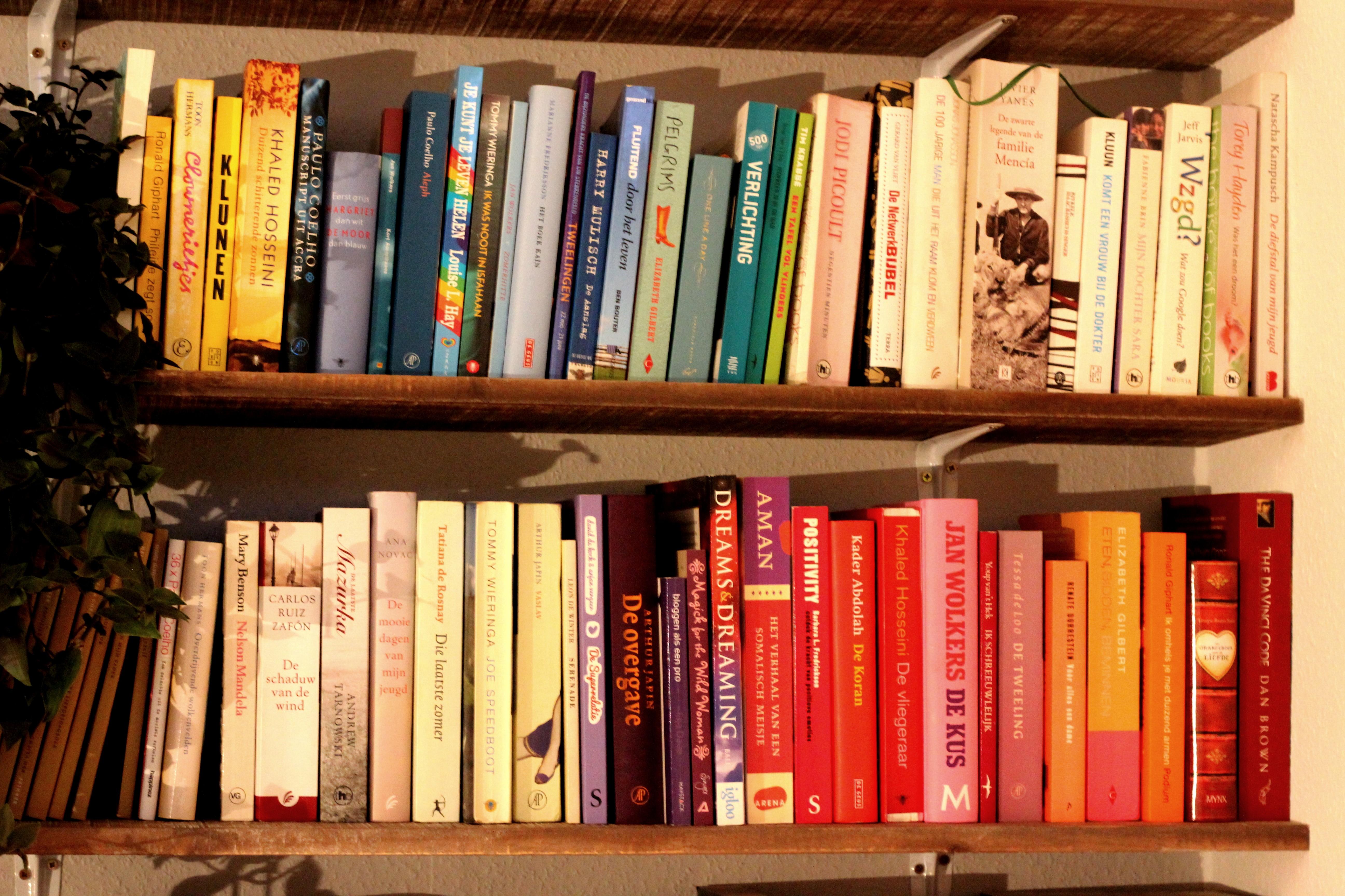 Boekenplank Met Boeken.Lifestyle Boeken