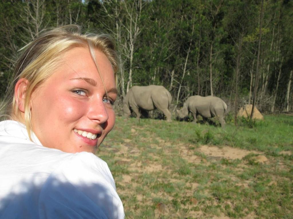 Neushoorns Afrika