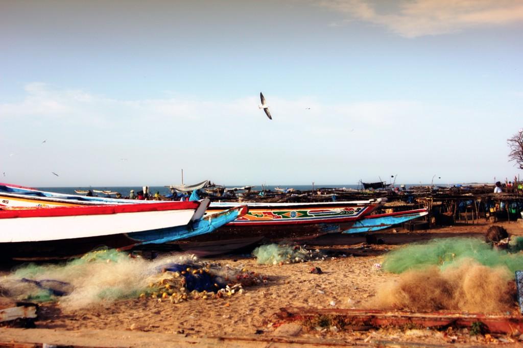 Gambia Tanji