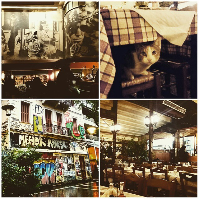 Rainy days in Athens are for exploring undiscovered hotspots in unknown areas. Like Floral, a cosy bookstore & bar in one, and Rozalia, a typical Greek (and cheap!) tavern with the best houmous I have ever had.  And they have cats too.