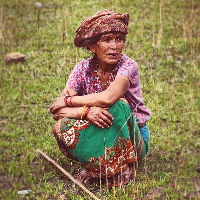 Beautiful Nepalese shepherd.