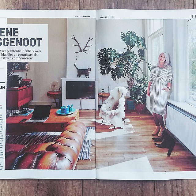 Aap & Noot in Elsevier Magazine ? oh and a weird blonde traveler wearing vintage in her jungle home.
