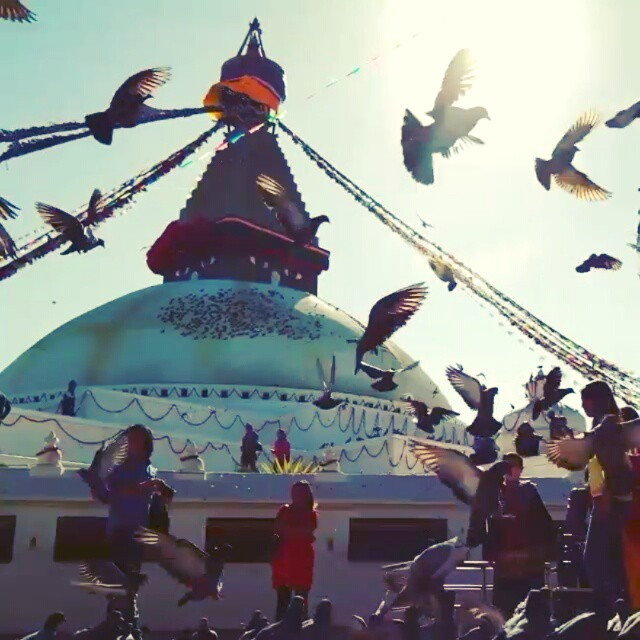▶ NEPAL in fifteen seconds. ? It's still unreal. It's such a wonderful country and they need our help. Please do so if you can. #prayforNepal  #infifteenseconds
