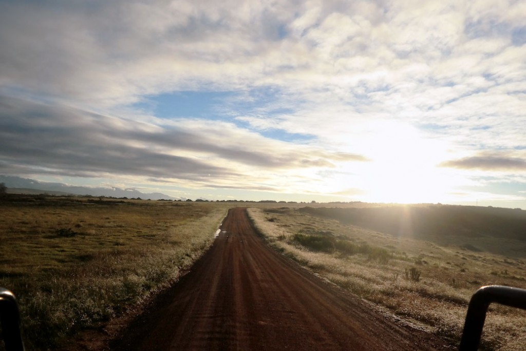 Road trip route van Port Elizabeth naar Kaapstad