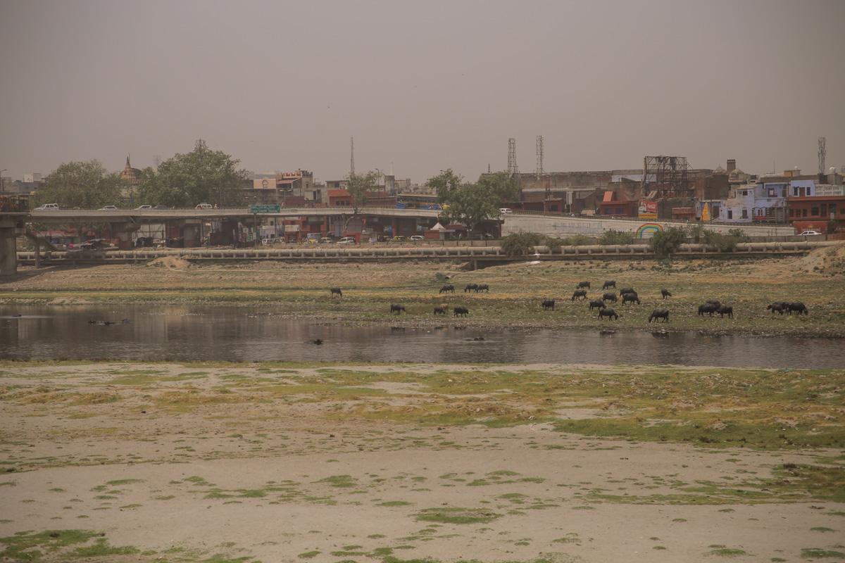 NEPAL_INDIA-109