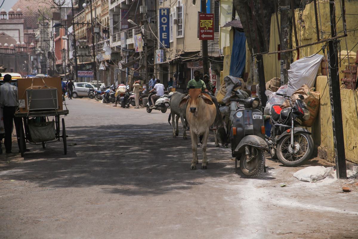 NEPAL_INDIA-111