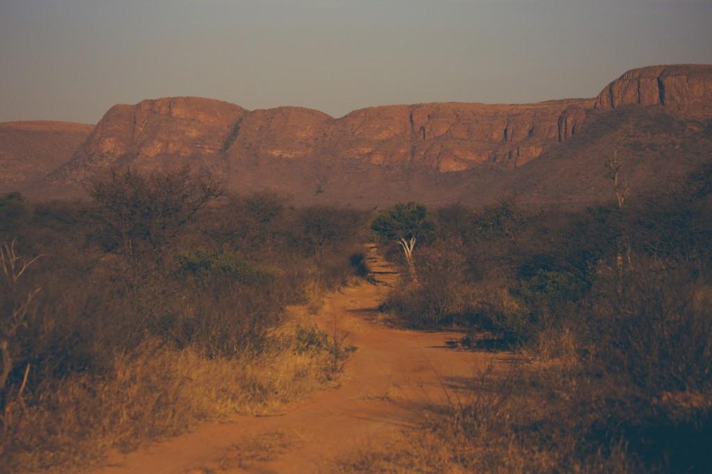Zuid-Afrika-Limpopo-Kruger-12