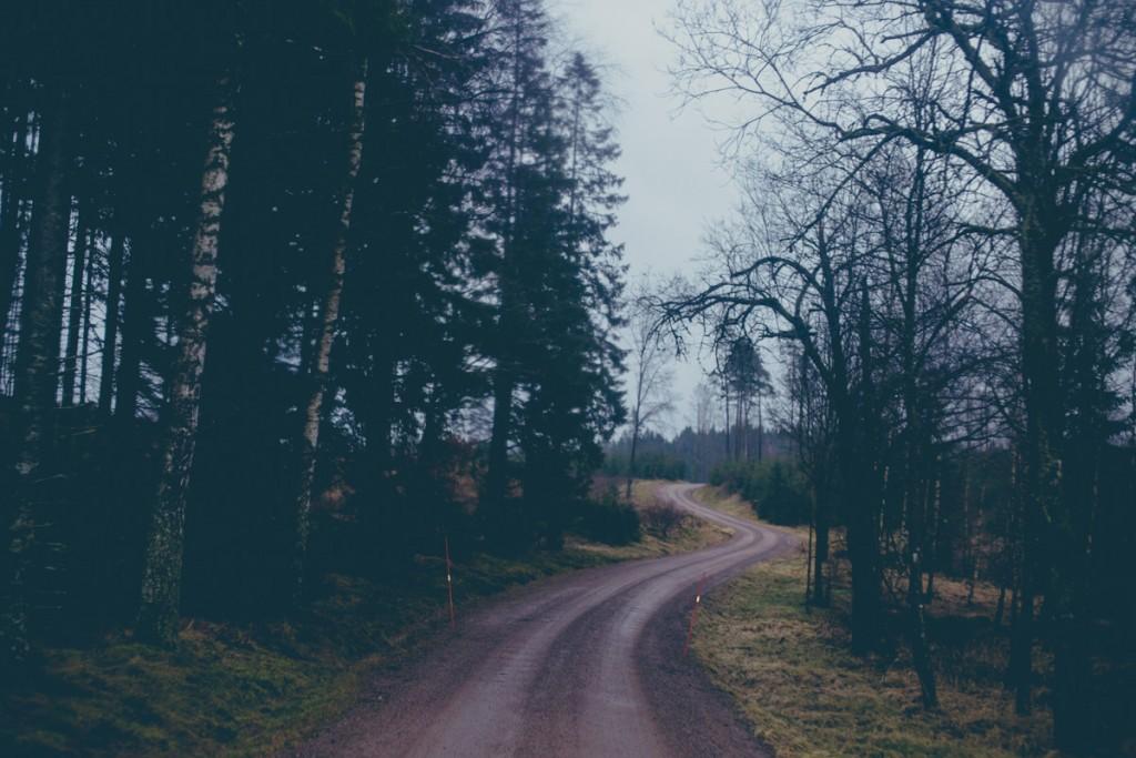 Zweden_Vakantiehuis_Boswezens-36