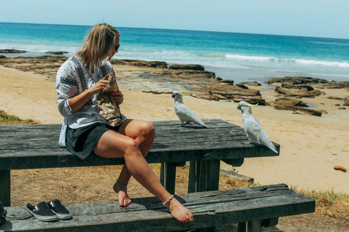 Australië_GreatOceanRoad_Hoogtepunten-14