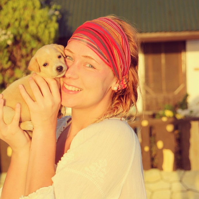 Puppies Bohol