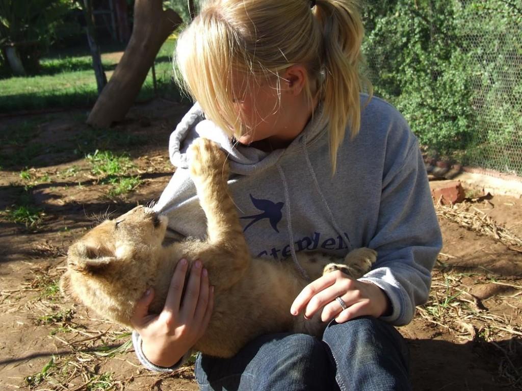 Afrika leeuwen knuffelen