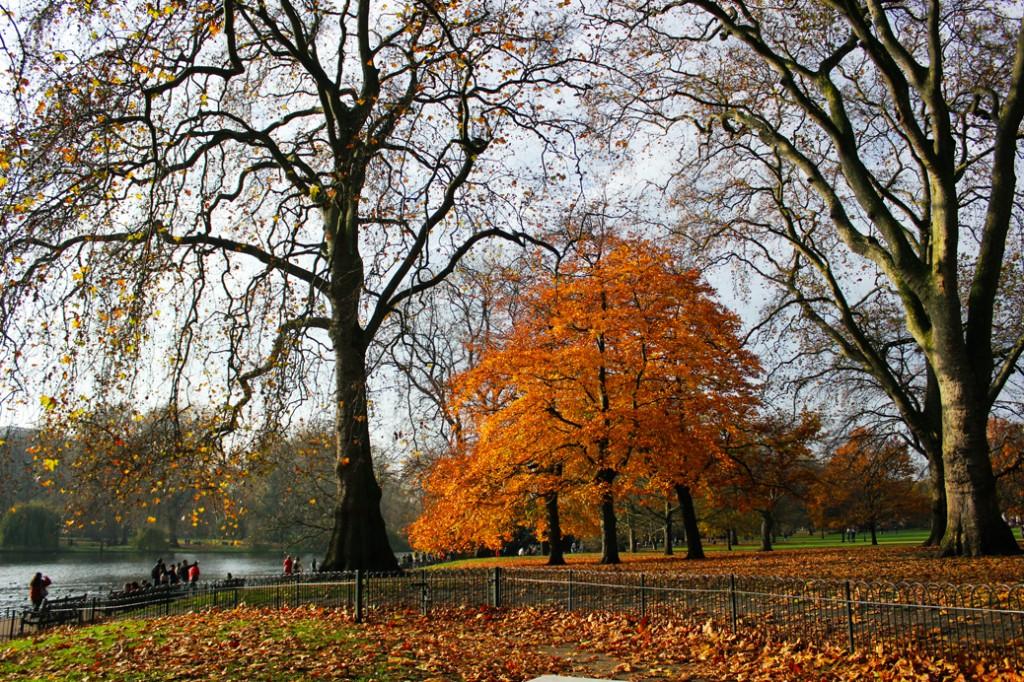 St James Park London