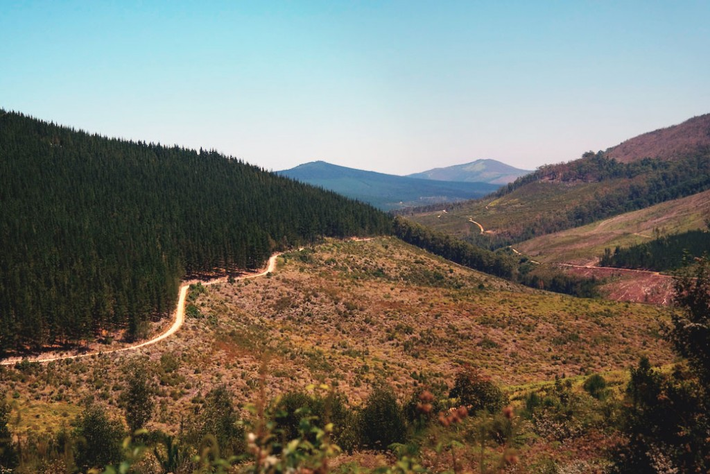 Prince Alfred Pass