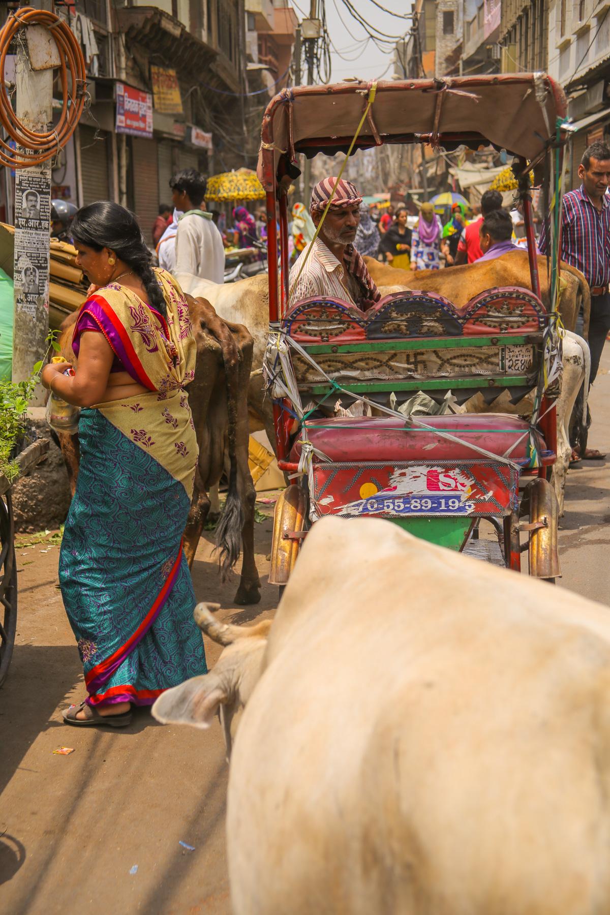 NEPAL_INDIA-113