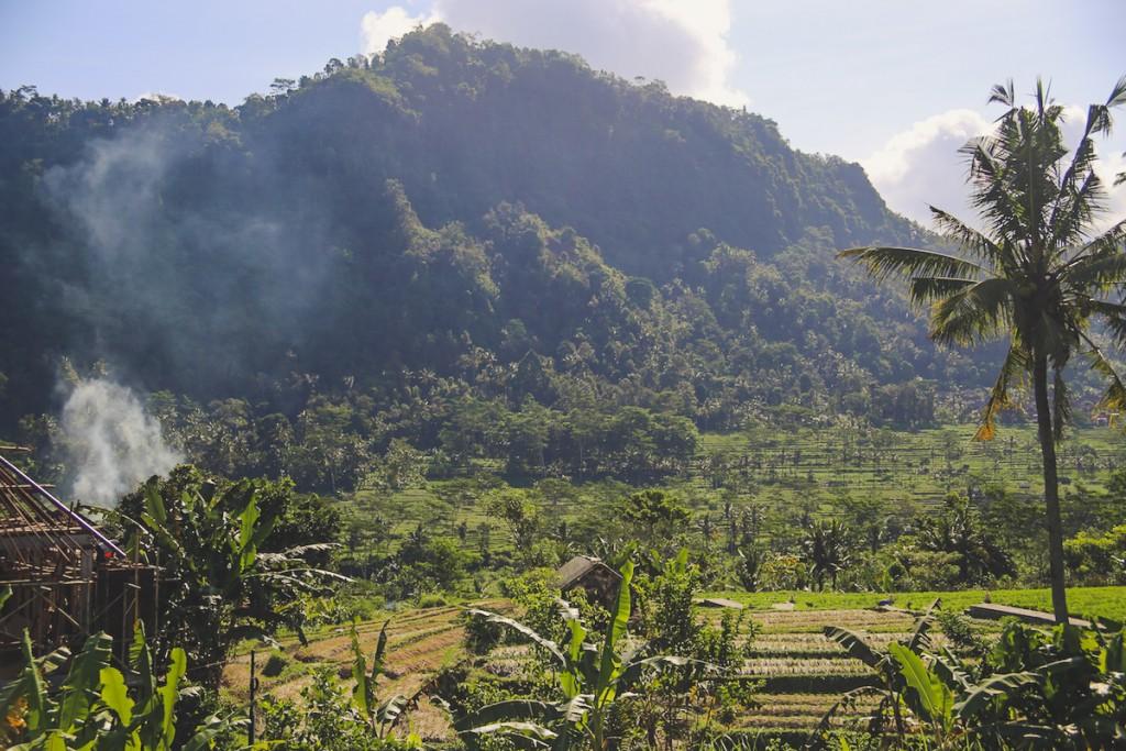 Bali_Papa-25