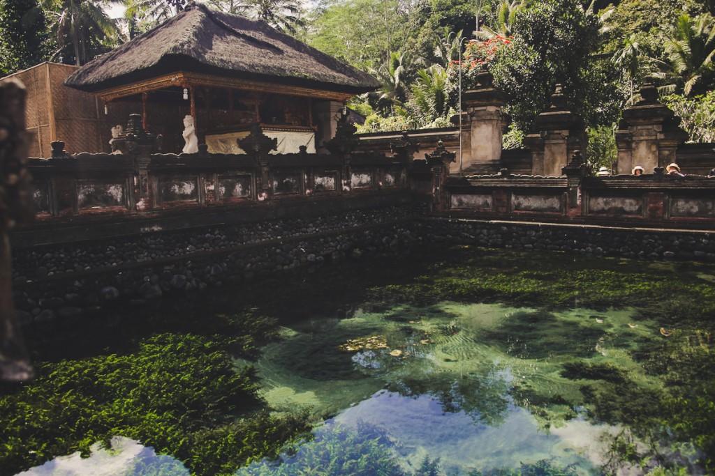 Bali_Papa-7