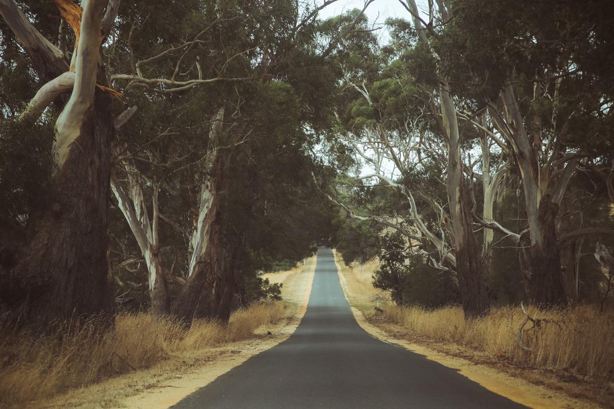 Australië_GreatOceanRoad_Hoogtepunten-30
