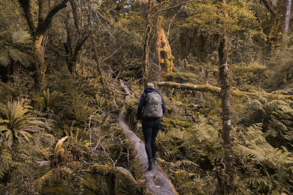 Nieuw-Zeeland Road Trip Zuidereiland