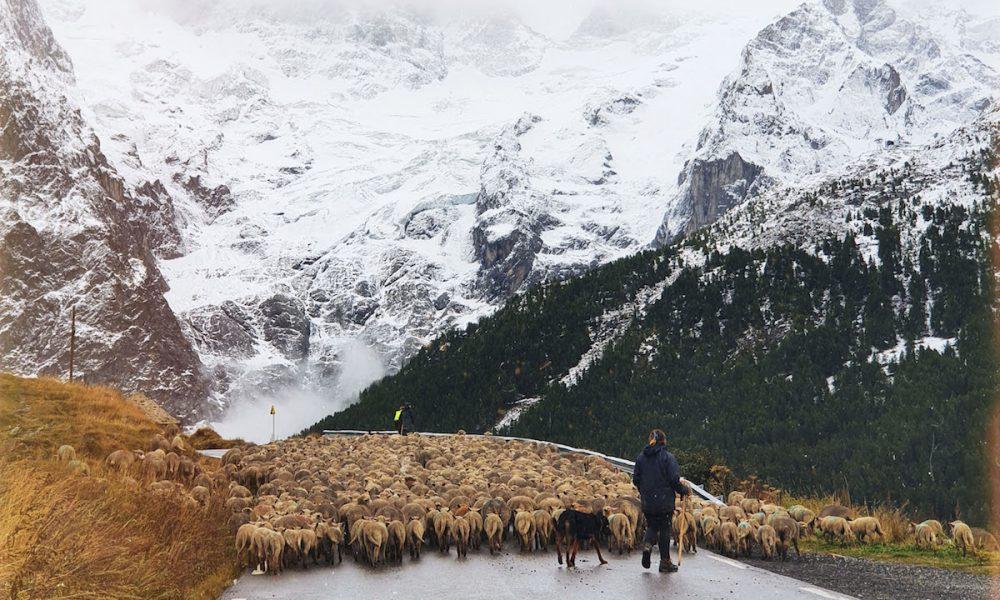 Roadtrip Frankrijk Les Ecrins